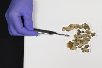 The Israel Antiquities Authority displayed the newly discovered Dead Sea Scroll fragments.