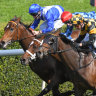 Funstar proves handful for J-Mac but times finish to a Tea