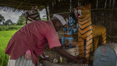 Mahadeo Baburao Irpate, a farmer, built a shrine to a tiger that died when it touched an electric fence he had put around his rice fields, in Kothulna, India.