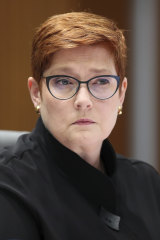 Minister for Foreign Affairs Marise Payne labelled the incident as ''grossly disturbing'' and ''offensive''.