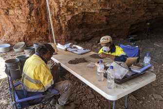 Eastern Guruma traditional owners Darren Hicks and Warwick Mourambine undertaking analysis of the excavated material at one of the rock shelters. Artefacts then underwent testing at Australian universities.