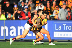 The Hawks take on Essendon at University of Tasmania Stadium in Launceston.