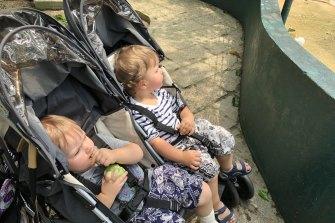 The twins were asleep within minutes of arrival at the city's bird park.