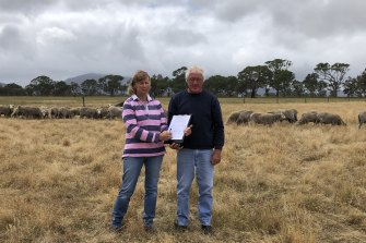 Rhonda and John Crawford, who run Rock-Bank Merino and Poll Merino Stud in Victoria Valley, have started a petition opposing the idea to re-introduce dingoes.