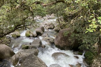 Mossman Gorge, part of Daintree National Park, will be formally returned to the Kuku Yalanji people.