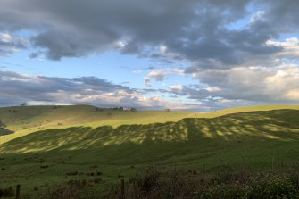 I live out in regional Victoria and I am so lucky and grateful to have views like these on my walk up and down my road.