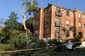 Storm damage at the corner of Mount and Bream streets at Coogee on Wednesday morning.
