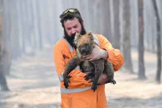 Adelaide wildlife rescuer Simon Adamczyk with a koala near Cape Borda, on Kangaroo Island, on Tuesday.