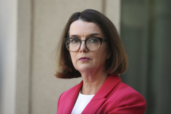 Social Services Minister Anne Ruston is pursuing the summit to set new goals to prevent violence against women.