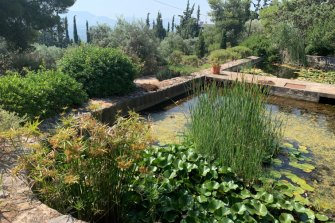 The garden at Sparoza as it appears today.