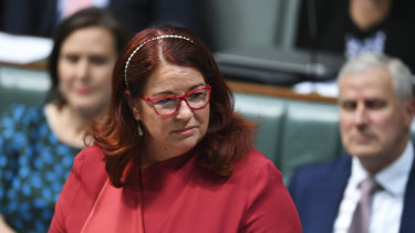 Federal Environment Minister Melissa Price was also under pressure to sign off on the Adani project before the election.