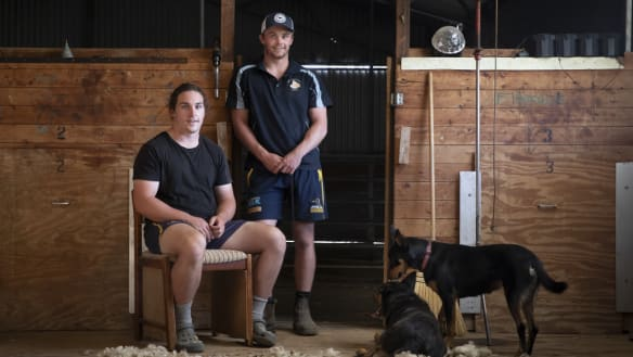 Brumbies brothers ready for a farm dream to become Super Rugby reality
