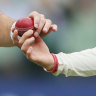 ICC rules spit is banned but sweat is OK to polish ball
