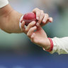 'Nooks and crevices': Can disinfectant be used on a cricket ball?
