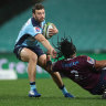 Waratahs hold closed captain's run as mining protesters accuse Santos of 'false accusations'