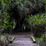 One of Australia's oldest native gardens can be found in suburbia