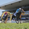 'Cost of doing business': Sportsbet convicted over illegal 'bonus bet' ad