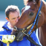 Cross Counter trainer eyes Melbourne Cup repeat