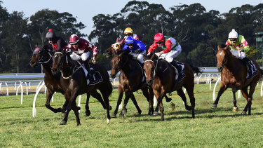 Eight races are scheduled for Warwick Farm on Monday.