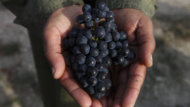 Canada has agreed to lift trade restrictions on Australian wine.