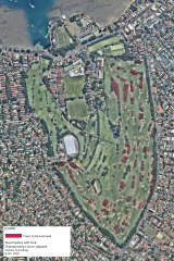 The Royal Sydney Golf Club development application to modernise its golf course, and remove trees marked in red, has attracted ferocious opposition.