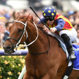 Nature Strip wins the VRC Sprint Classic at Flemington in November
