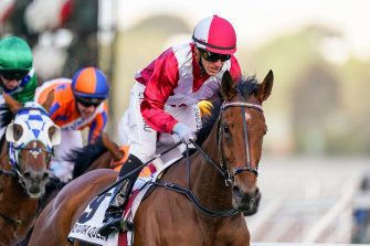 Arcadia Queen and Luke Currie take out the Mackinnon at Flemington on Saturday.