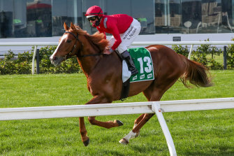 Django Freeman could race twice in the same week if he wins the Coongy for a place in the Caulfield Cup.