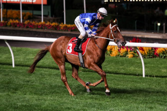 Lightning Stakes winner Gytrash is a $15 chance for The Everest.