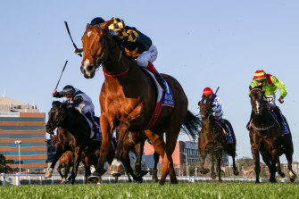Behemoth charges to victory in the Memsie Stakes at Caulfield next month