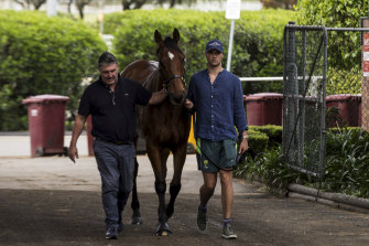 Father and son trainers Anthony and Sam Freedman, pictured with star sprinter Santa Ana Lane.