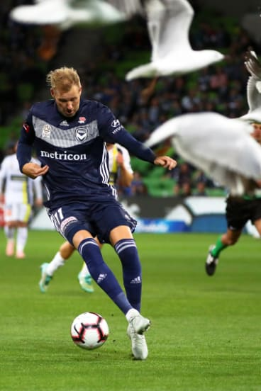 Feathers fly: Swedish import Ola Toivonen scatter a fkock of seagulls as he powers forward on debut for Victory.