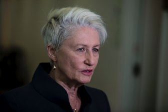 Dr Kerryn Phelps said the demonstration would help dispel misconceptions about the pill-testing process.