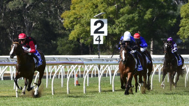 Rancho Notorious runs second to Making Whoopee at Warwick Farm a fortnight ago.