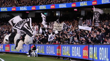 Birds of a feather: Magpies fans celebrate a goal against Geelong at the MCG on Friday night.