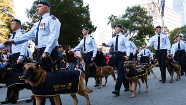 Airforce servicemen march together with the Australian Airforce military working dogs.
