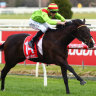 Racing Analyst: The top 10 performances at Caulfield, Randwick