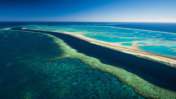 'Laughable': Reef Foundation windfall was a trial case, document shows