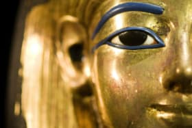 The Australian Museum's Pacific collections are moving out to make way for the King Tut exhibition.