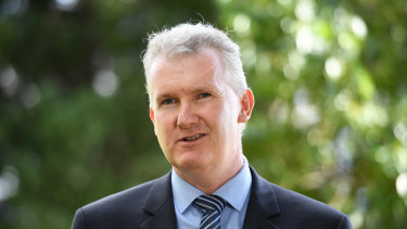 NSW Right frontbencher Tony Burke is supporting the Left's Anthony Albanese.