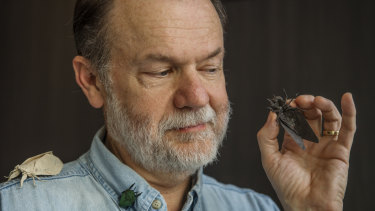 Former NASA engineer Dr Robert Lang says origami is much more than just simple birds and flowers.