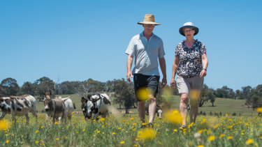 Arnold and Marchien Dekker on their hobby farm in the proposed 5 kilometre buffer zone on the ACT border where the Yass council wants to freeze housing development.