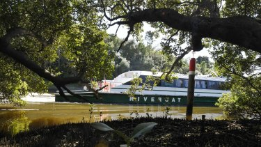 The Marlene Mathews RiverCat on the Parramatta River last week.