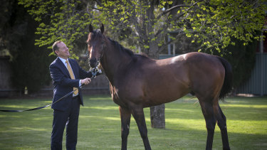 Tabcorp's managing director of waging, Adam Rytenskild, with Ventura Storm which will be running in the Queen Elizabeth Stakes.