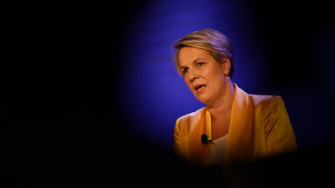 """Tanya Plibersek said """"we need to make the case for an Australian republic; not the case against the British monarch""""."""