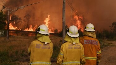 The summer's bushfires have torched about 12 million hectares across the country.