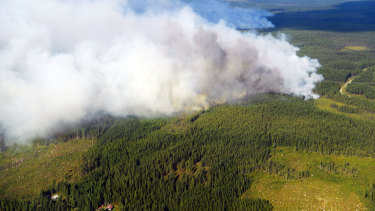 Smoke billows from a fire outside Ljusdal, Sweden as the country fought its most serious wildfires in decades, including blazes above the Arctic Circle, last year.