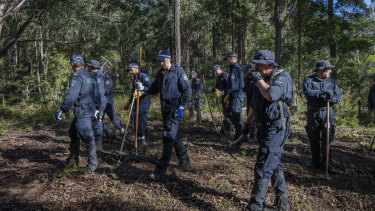 Police and SES, in June last year, search bushland abutting the street from which William disappeared.