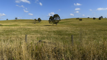 BHP's potash will be spread on the paddocks of the world.