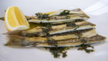 Grilled King George Whiting with salmoriglio and lemon.